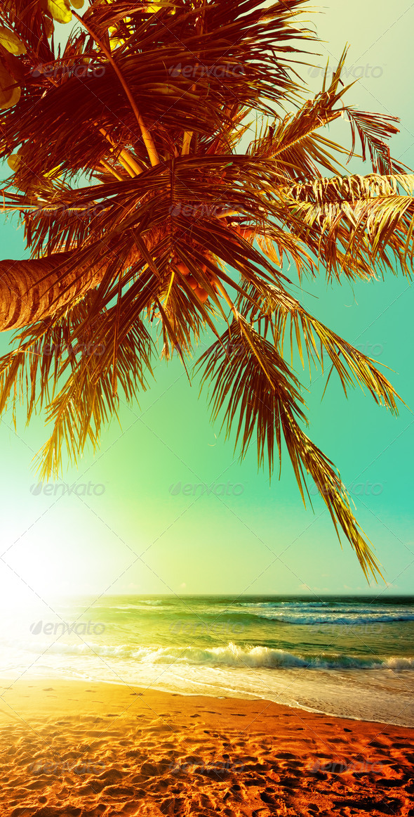 Tropical beach at sunset time