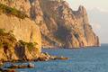 "Coastline with pine trees (""Inzhir"" reserve, Crimea, Ukraine)"