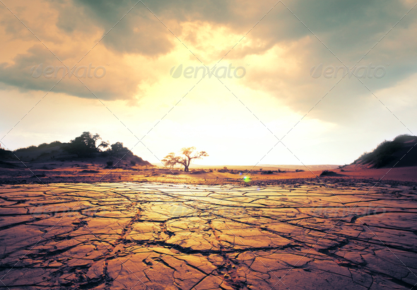 Drought land - Stock Photo - Images