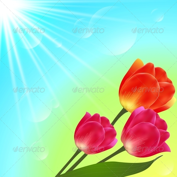 GraphicRiver Vector Sunny Tulip Flowers Bouquet Card Template 4621280