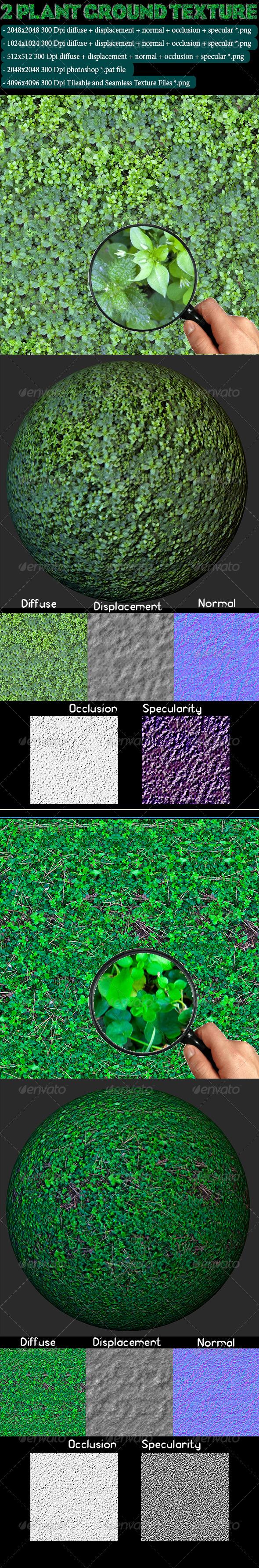 3DOcean 2 Plant Ground Texture 4622998