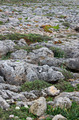 Roughy rocky terrain in Sagres, Portugal - PhotoDune Item for Sale