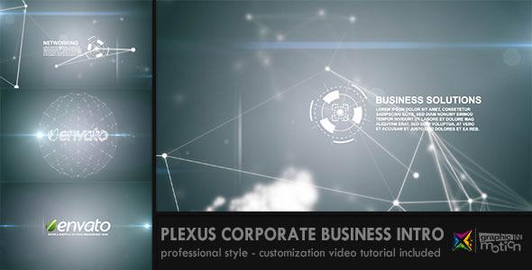 Plexus Corporate Business Intro