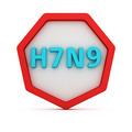 Bird flu subtype - PhotoDune Item for Sale