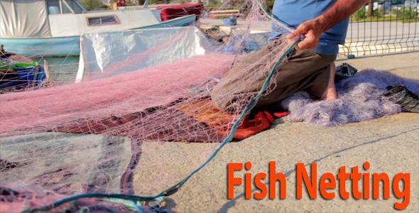 Fish Netting