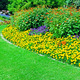 Beautiful flowerbed in summer park - PhotoDune Item for Sale