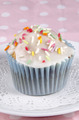 cupcake with icing and colorful sprinkles - PhotoDune Item for Sale
