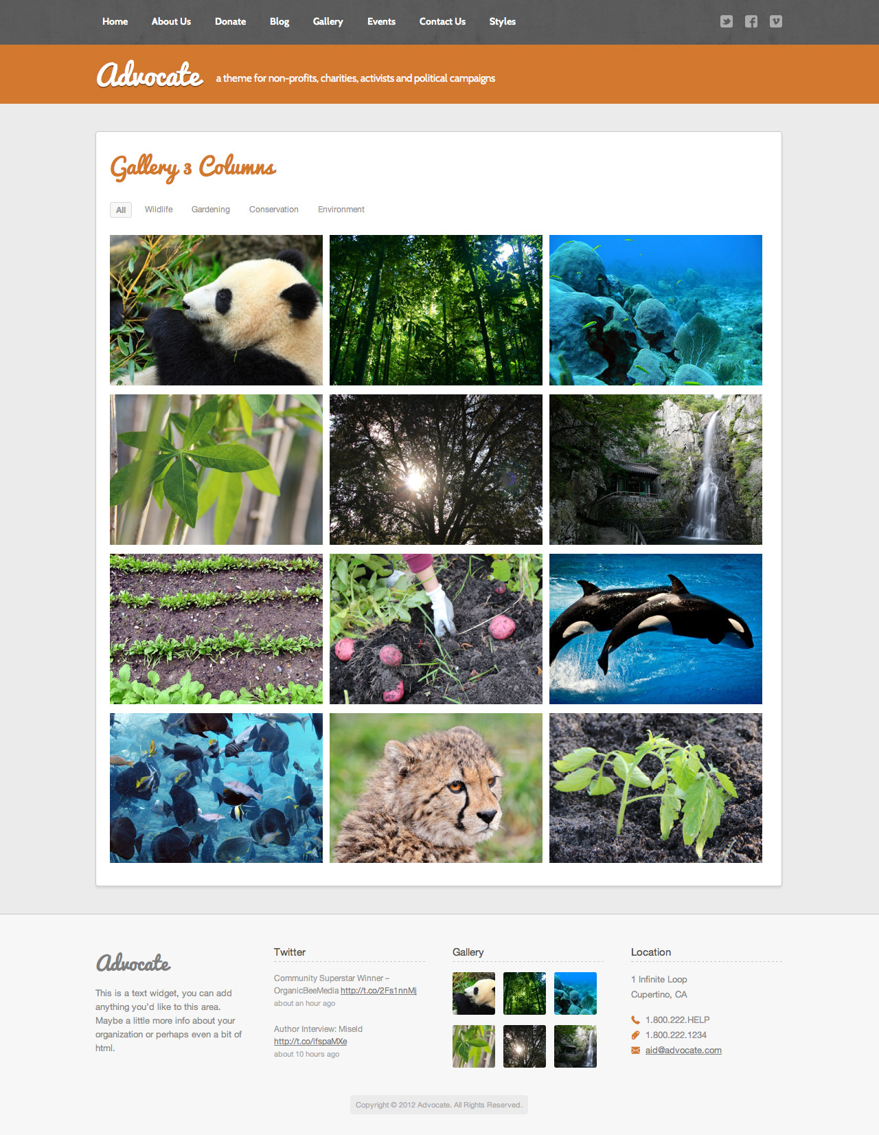 Advocate - A Nonprofit WordPress Theme - Gallery/Portfolio - Can be created with or with description and can be linked to full description page.
