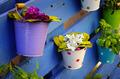 Flower Baskets - PhotoDune Item for Sale