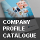 Company Profile Catalogue - GraphicRiver Item for Sale