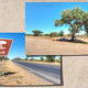 Picnic tree in Namibia - PhotoDune Item for Sale