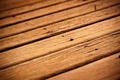 Timber Decking - PhotoDune Item for Sale