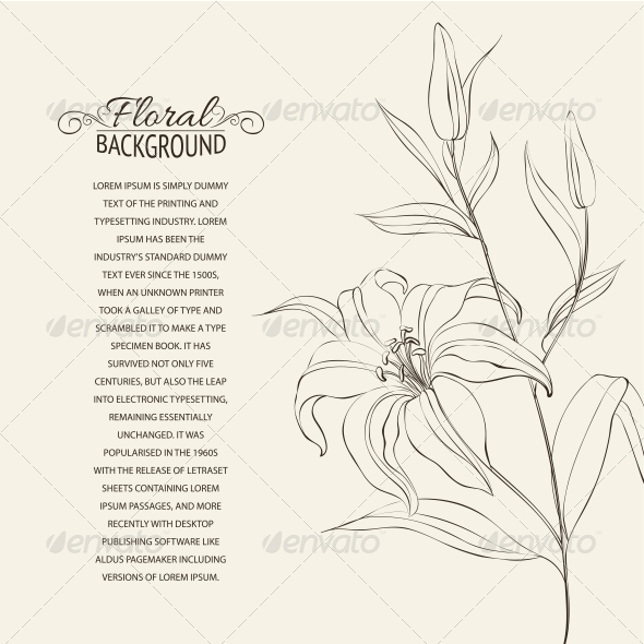 GraphicRiver Lily Flower Isolated Over White 4639519