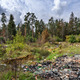 Garbage dump in forest - PhotoDune Item for Sale
