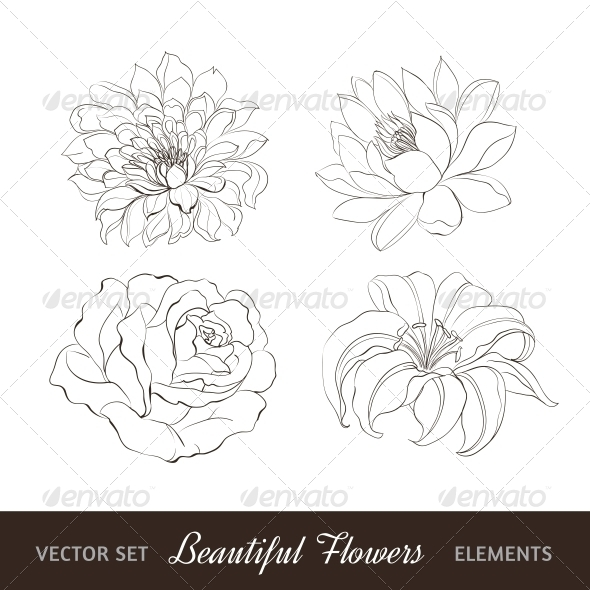 GraphicRiver Set of Flowers Isolated over White 4640528