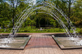 fountain inbotanic  Garden with beautiful nature - PhotoDune Item for Sale