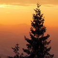 Beautiful sunrise in Carpathian mountains, Ukraine - PhotoDune Item for Sale