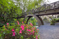 Wooden Bridge at Crystal Springs Rhododendron Garden - PhotoDune Item for Sale