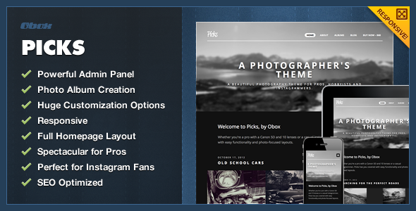 Picks - WordPress Photography Theme - Photography Creative