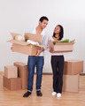 Couple Carrying Boxes In House - PhotoDune Item for Sale