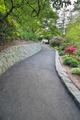 Walking Path at Crystal Springs Rhododendron Garden - PhotoDune Item for Sale