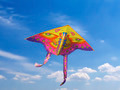 Kite in the Sky - PhotoDune Item for Sale