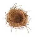 Empty Nest - PhotoDune Item for Sale