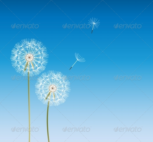 GraphicRiver Abstract Dandelion Background Vector Illustration 4655430