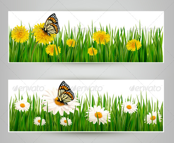 GraphicRiver Two Banners with Butterflies and Flowers 4655519