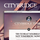 CityBridge — Retina Tumblr Blog Theme - ThemeForest Item for Sale