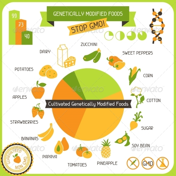 GraphicRiver Information Poster Genetically Modified Foods 4665130