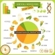 Information Poster Genetically Modified Foods - GraphicRiver Item for Sale