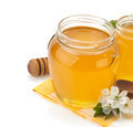 glass jar full of honey and stick - PhotoDune Item for Sale