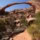 Landscape Arch on a Sunny Day in Arches National Park - PhotoDune Item for Sale