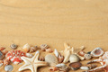 sea shells with sand - PhotoDune Item for Sale