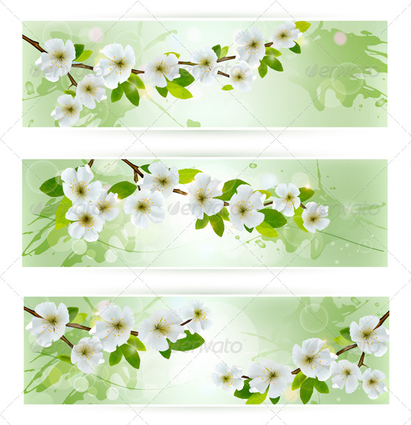 Three Nature Banners with Blossoming Tree Branches