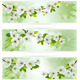 Three Nature Banners with Blossoming Tree Branches - GraphicRiver Item for Sale