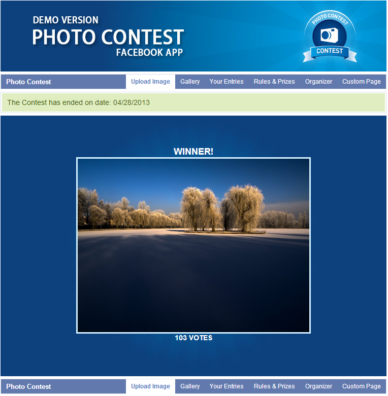 Photo contest facebook app by alfinator codecanyon for Facebook photo contest rules template