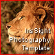 Irisight Photography template - ActiveDen Item for Sale