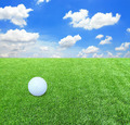 White golf ball against the green grass - PhotoDune Item for Sale