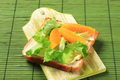 Vegetarian sandwich - PhotoDune Item for Sale