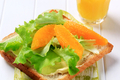 Healthy sandwich and orange juice - PhotoDune Item for Sale