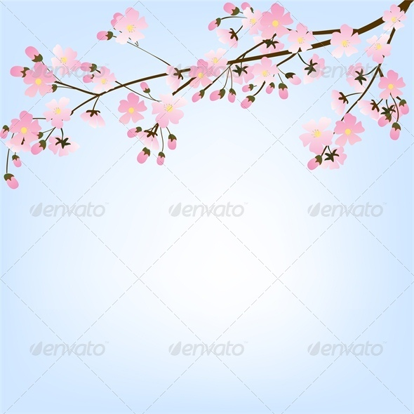 GraphicRiver Blooming Spring Tree Branch and Blue Sky 4687041
