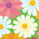Seamless Textures of Daisy Flowers - GraphicRiver Item for Sale