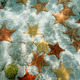 Plenty of starfish on a sandy ocean floor - PhotoDune Item for Sale