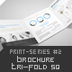 Brochure Tri-Fold Square Print-Series #3 - GraphicRiver Item for Sale