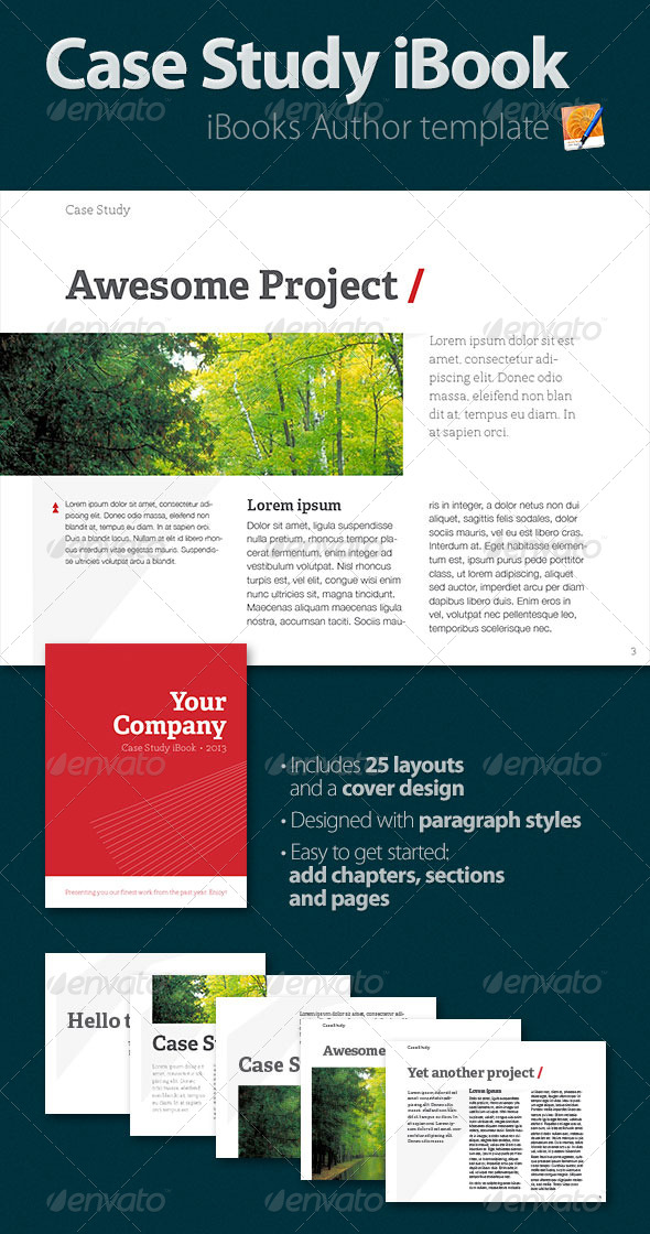 GraphicRiver Case Study iBook 4698183