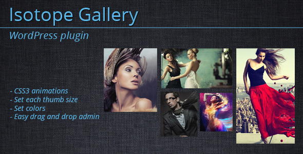 Isotope Gallery – WordPress Plugin Isotope Gallery is an interactive WordPress photo gallery plugin, best fit for creative and corporate portfolio website