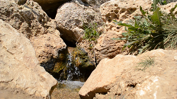 Spring Flows Among Stones