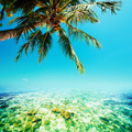 Tropical sea scenery - PhotoDune Item for Sale